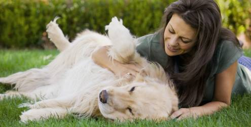402844 mulher brincando com o cachorro 6492 Falta de apetite em cães: o que fazer