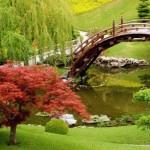 403984 Jardim Botânico de Huntington EUA 150x150 Jardins mais famosos do mundo: fotos
