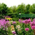 403984 Jardim de Claude Monet França 150x150 Jardins mais famosos do mundo: fotos