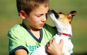 Morte do bicho de estimação: como explicar para a criança