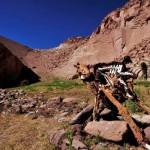 406136 Deserto de Atacama16 150x150 Paisagens de deserto: fotos