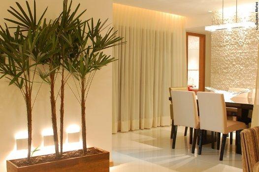 jardim vertical interno apartamento: dentro do apartamento dicas 1 Paisagismo dentro do apartamento: dicas