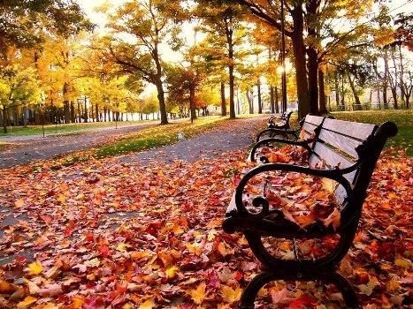 411954 20 de março Início do outono 20 de março: Início do outono
