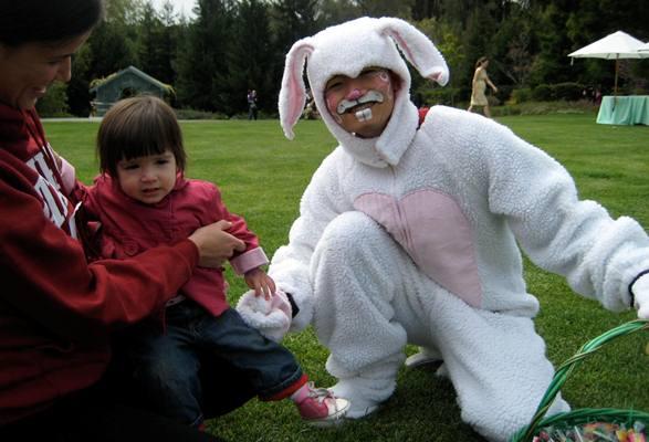 414845 Fantasia de coelho da Páscoa 4 Fantasia de coelho da Páscoa