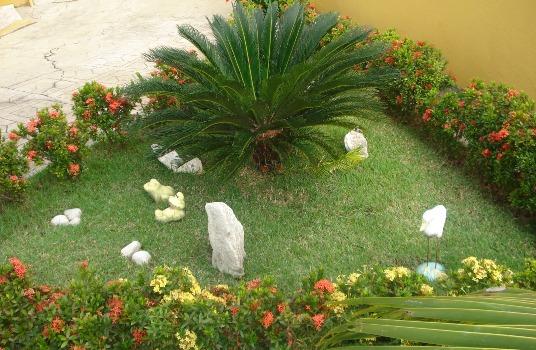 Como escolher o gramado do jardim 2 Como escolher o gramado do jardim