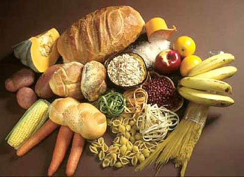 419222 carboidratos 11 Alimentos que não possuem carboidratos