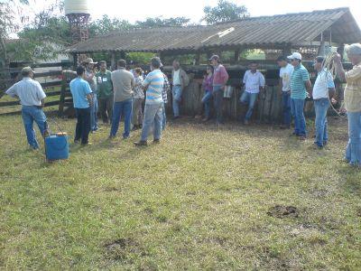 421964 cursos gratuitos para produtores rurais 2 Cursos gratuitos para produtores rurais