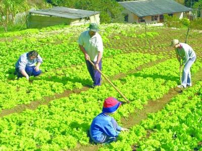 421964 cursos gratuitos para produtores rurais Cursos gratuitos para produtores rurais