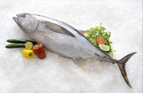 423024 atum en Receita de macarrão com atum e abobrinha