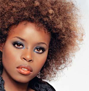 424495 Sugest%C3%B5es de Penteados para cabelos afros 4 Sugestões de Penteados para cabelos afros
