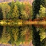 425990 outono gran bretanha2 floresta 150x150 Paisagens do outono: fotos