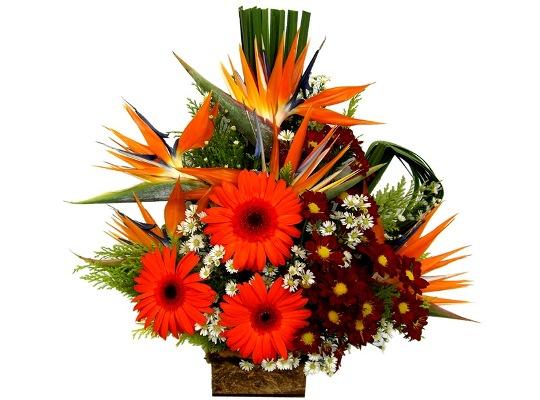 426154 Arranjos de flores para o dia das mães 15 Arranjos de flores para o dia das mães