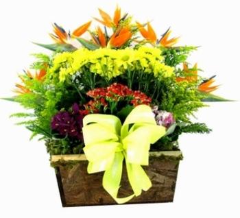 426154 Arranjos de flores para o dia das mães 5 Arranjos de flores para o dia das mães
