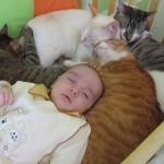 427493 Crianças e animais fotos 3 150x150 Crianças e animais: fotos