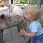 427493 crianças e animais fotos 21 150x150 Crianças e animais: fotos