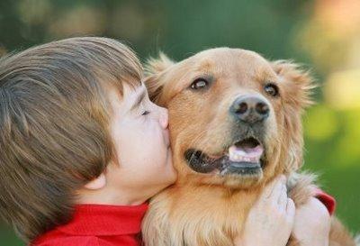 427493 crian%C3%A7as e animais fotos 6 Crianças e animais: fotos