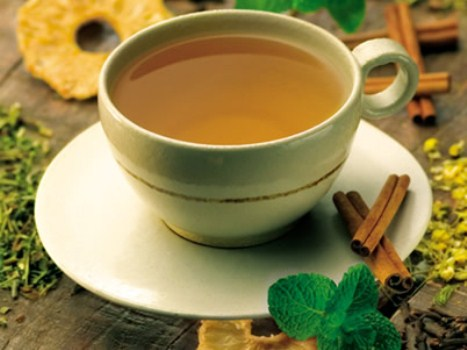 427534 cha de boldo para o estomago Chá de boldo: benefícios