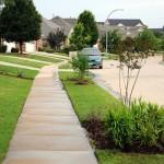 431805 Calçadas verdes como montar fotos 1 150x150 Calçadas verdes: como montar, fotos