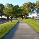 431805 Calçadas verdes como montar fotos 4 150x150 Calçadas verdes: como montar, fotos