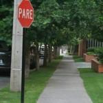 431805 Calçadas verdes como montar fotos 7 150x150 Calçadas verdes: como montar, fotos