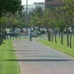 431805 Calçadas verdes como montar fotos 8 150x150 Calçadas verdes: como montar, fotos