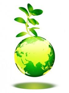 43200 ciencias ambientais 224x300 Curso de Ciências Ambientais: Curso de Graduação