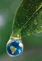 43200 meio ambiente Curso de Ciências Ambientais: Curso de Graduação