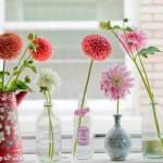 436175 Decoração com vasos Como fazer fotos 2 150x150 Decoração com vasos   Como fazer, fotos