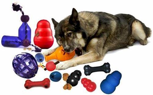 440414 Brinquedos para c%C3%A3es 4 Brinquedos para cães: dicas, preços