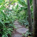 441715 Caminhos para jardim dicas fotos 10 150x150 Caminhos para jardim: dicas, fotos