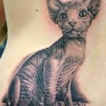 442212 Tatuagem de Animais Fotos 03 150x150 Tatuagem de Animais   Fotos