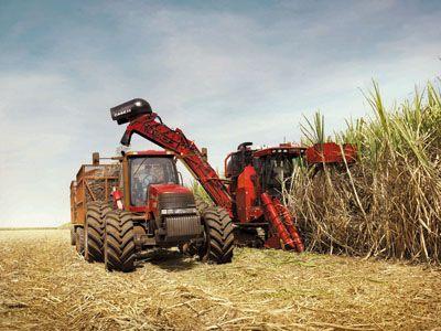 444614 curso tecnico gratuito de mecanizacao agricola 2 Curso técnico gratuito de mecanização agrícola