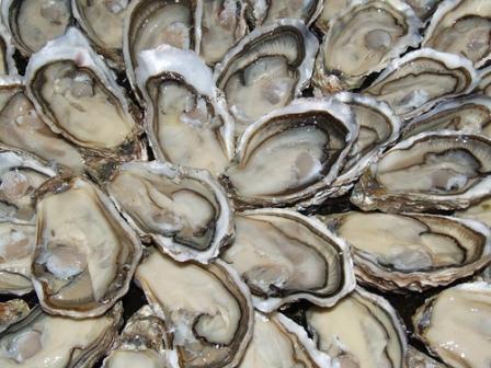446200 suflê ostras 1 Suflê de ostras afrodisiaco