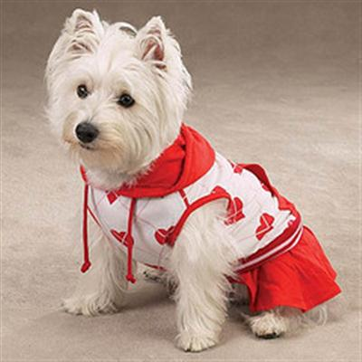 450851 Sites de roupas importadas para cães2 Site de roupas importadas para cães