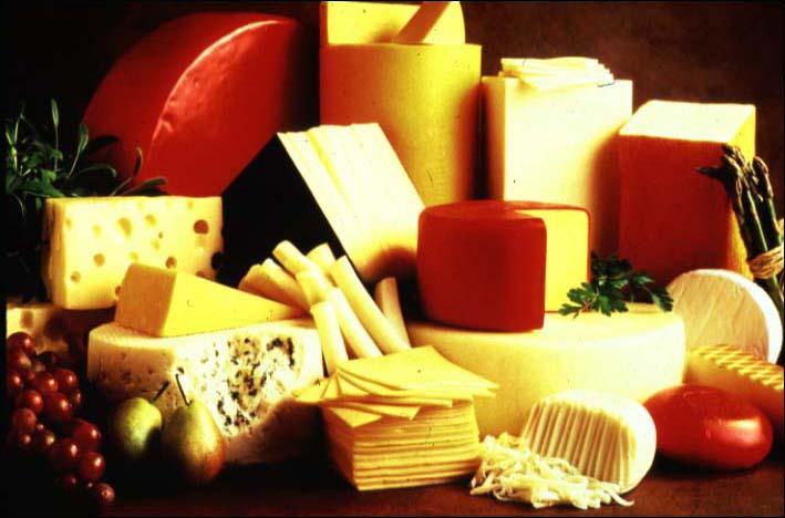 452456 queijos e seus tipos 2 Queijos e os seus diferentes tipos