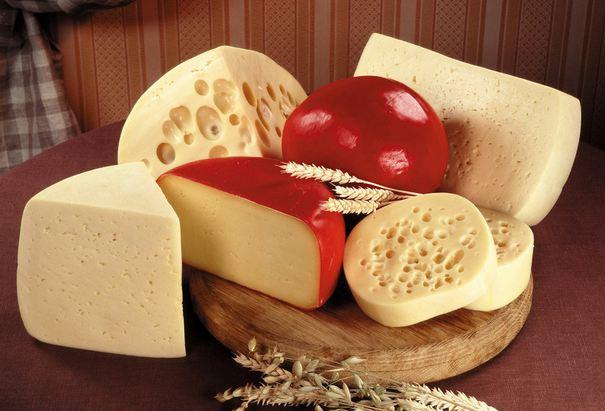 452456 queijos e seus tipos 6 Queijos e os seus diferentes tipos