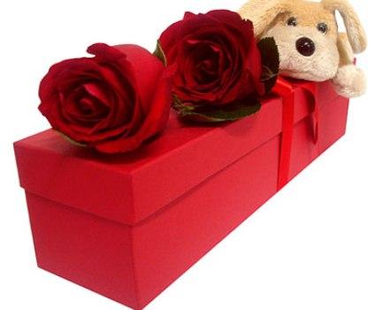 453189 Presentes de última hora para o dia dos namorados Presentes de última hora para o dia dos namorados