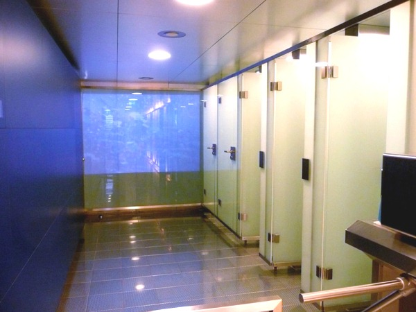 456317 berlin12 Doenças transmitidas em banheiros públicos