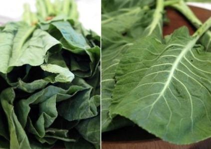 459210 As hortaliças de cor verde são excelentes para a preparação de sucos Suco verde desintoxicante: como fazer