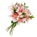 459233 Fotos de buquês de flores 09 150x150 Fotos de buquês de flores
