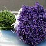 459233 Fotos de buquês de flores 22 150x150 Fotos de buquês de flores