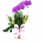 459233 Fotos de buquês de flores 24 150x150 Fotos de buquês de flores