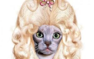Fotos de gatos fantasiados