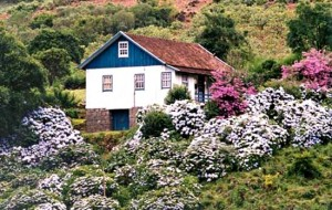 Viagem romântica para Serra Gaúcha