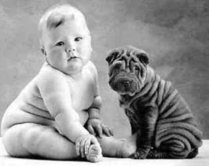461289 Fotos de beb%C3%AAs com cachorros 01 Fotos de bebês com cachorros