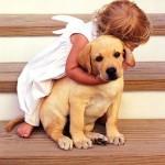 461289 Fotos de bebês com cachorros 09 150x150 Fotos de bebês com cachorros