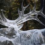 463896 Esculturas de gelo 12 150x150 Esculturas de gelo, fotos
