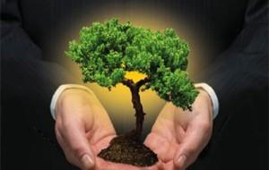 Curso técnico gratuito Meio Ambiente Secitec 2012