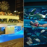 467807 Fotos de Las Vegas EUA 13 150x150 Fotos de Las Vegas, EUA