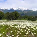 468103 Fotos de Bariloche Argentina 23 150x150 Fotos de Bariloche, Argentina